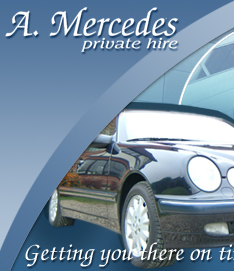 amercedes.net home page